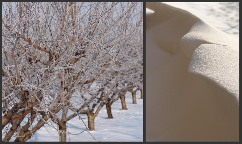 Collage di Picnik2